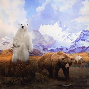 Polar Bear, Grizzly Bear and Grolar Bear by Anne Zahalka contemporary artwork