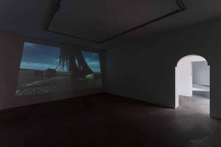 Exhibition view: Dong Jinling,The Purity of a Horse, de Sarthe Gallery, Beijing (17 March-6 May 2018). Courtesy de Sarthe Gallery.