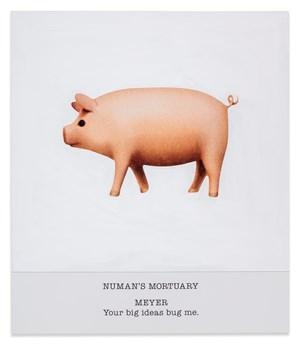NUMAN'S MORTUARY MEYER Your big ideas bug me. by John Baldessari contemporary artwork