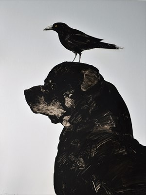 Dogbird by Graham Lang contemporary artwork