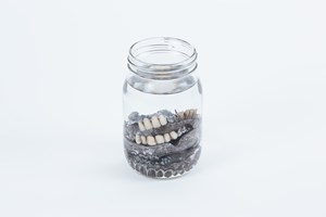 Jar of Dentures by Michael Needham contemporary artwork