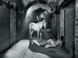 Dubai Lowdown: Exhibitions to See
