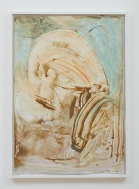 Siren Intermedia by Jimmie Durham contemporary artwork painting, works on paper