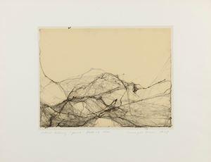 Spinne (Spider) by Annegret Soltau contemporary artwork
