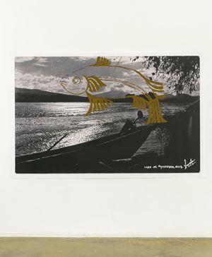 Las leyes de la metamorfosis: acúmara (Algansea lacustris) 2 by Abraham Cruzvillegas contemporary artwork