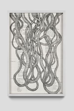 a systems vocabulary by Nolan Oswald Dennis contemporary artwork works on paper, drawing