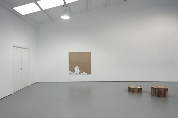 Exhibition view: Manal AlDowayan, Watch Before You Fall, Sabrina Amrani Gallery, Sallaberry, 52, Madrid(12 January–30 March 2019). Courtesy Sabrina Amrani Gallery.