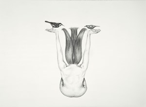 Hanging garden by Patricia Piccinini contemporary artwork drawing