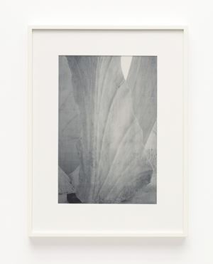 Parthenon. West pediment. Crowning akroterion (floral ornament) by James Welling contemporary artwork