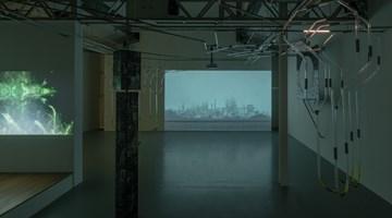 Contemporary art exhibition, Group exhibition, Reciprocal Reliance | 相互依存 at SCAI The Bathhouse, Tokyo, Japan