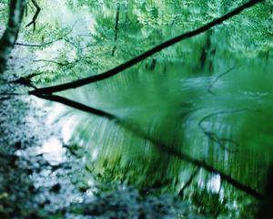 Water Mirror 17, WM-753 by Risaku Suzuki contemporary artwork