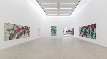 Contemporary art exhibition, Sungsic Moon, Beautiful. Strange. Dirty. at K2 & K3, Kukje Gallery, Seoul, South Korea