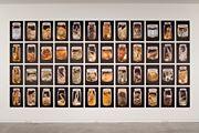 Anthropoda by Neil Pardington contemporary artwork 1