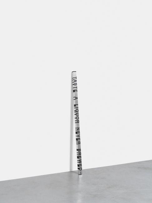 Key and Cue, No. 214 (I TASTE A LIQUOR) by Roni Horn contemporary artwork