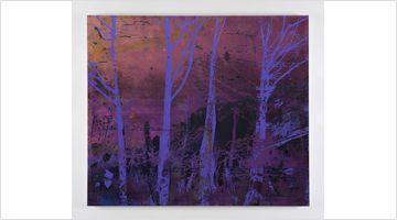 Contemporary art exhibition, Elizabeth Magill, Red Stars and Variations at Kerlin Gallery, Dublin