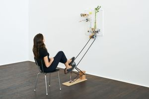 #33 with bamboo and bicycle by Mika Rottenberg contemporary artwork