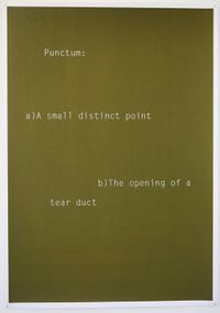 Shouting in Whispers (Punctum) by Helen Cammock contemporary artwork works on paper, print