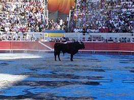 Ena Swansea Paints Arles Bullfight