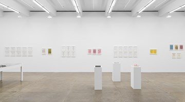 Contemporary art exhibition, Barbara T. Smith, Outside Chance at Andrew Kreps Gallery, New York