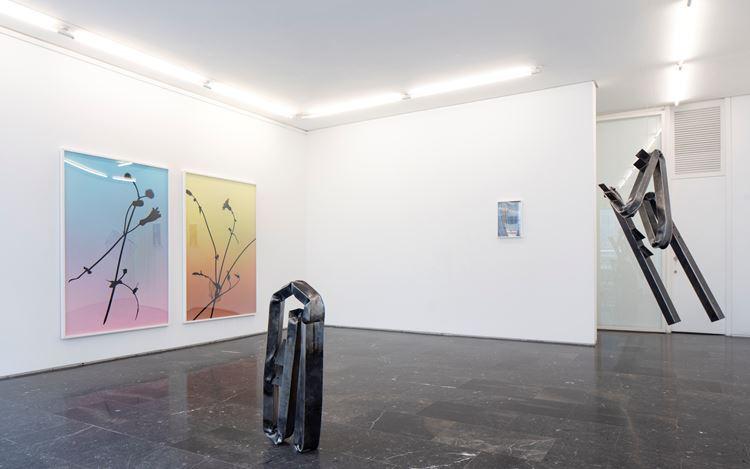 Exhibition view: Group Exhibition, Territorio y refugio, Luis Adelantado, Valencia (25 September 2020–8 January 2021). Courtesy Luis Adelantado Valencia.