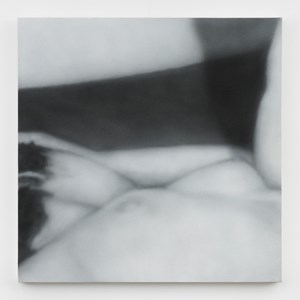 Sex Painting #2 by Betty Tompkins contemporary artwork