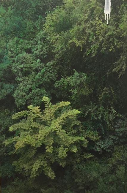 Study of Green-Grove2 by Honggoo Kang contemporary artwork