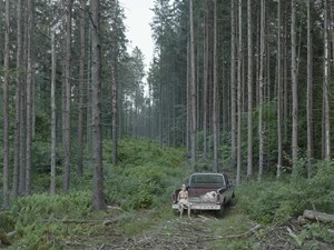 Pickup Truck by Gregory Crewdson contemporary artwork