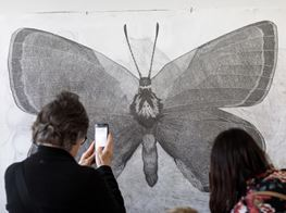 Lucienne Rickard Spent 360 Hours on a Drawing, Then Erased It