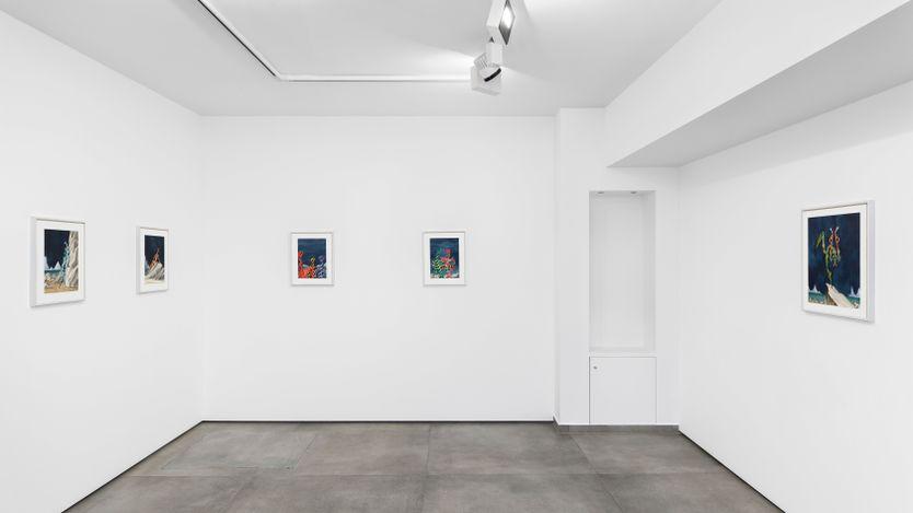 Exhibition view: Alejandro Cardenas, PARADOXA, Almine Rech, Avenue Matignon, Paris (30 June–31 July 2021). Courtesy the artist and Almine Rech. Photo: Nicolas Brasseur.