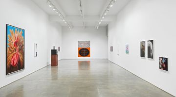 Contemporary art exhibition, Group exhibition organised by Alexander Ferrando, Wish at Metro Pictures, New York, USA