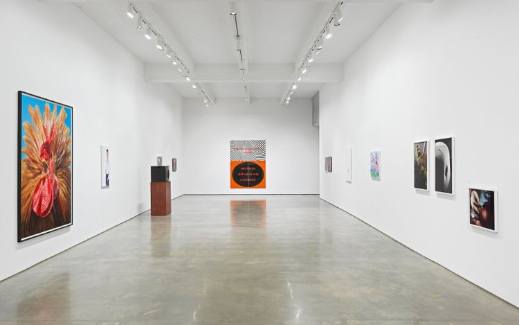 Exhibition view: Group exhibition, Wish,Metro Pictures, New York (17 June–6 August 2021). Courtesy of the artists and Metro Pictures, New York.