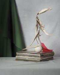 Vinyl Records on aStage, a Bird-ofParadise and a Ball by Seongyeon Jo contemporary artwork photography