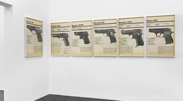 Contemporary art exhibition, Lutz Bacher, FIREARMS at Galerie Buchholz, Cologne