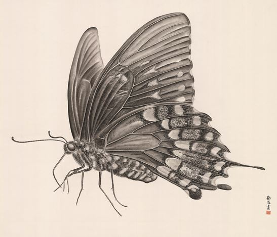 Zhang Yirong, Butterfly 2 (2018). Chinese ink on rice paper. 120 x 140 cm. Courtesy Alisan Fine Arts, Aberdeen.