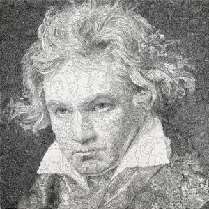 Hystorical Portraits - vol. 1 Ludwig van Beethoven by Keita Sagaki contemporary artwork