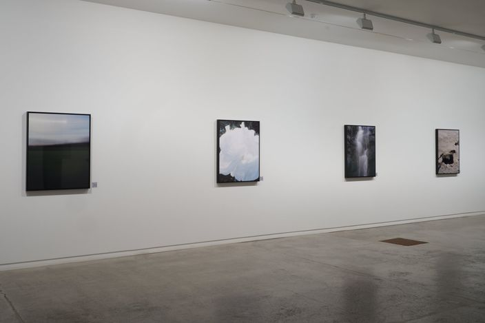 Exhibition view: Conor Clarke, As far as the eye can reach, Two Rooms, Auckland (4 June–3 July 2021). Courtesy Two Rooms.