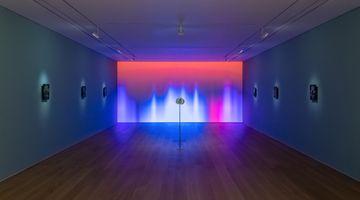 Contemporary art exhibition, Laurent Grasso, Future Herbarium at Perrotin, Hong Kong