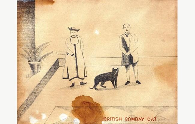 British Bombay Cat by Anil Thambai contemporary artwork