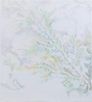 Fern 160704 蕨 160704 by Jeng Jundian contemporary artwork