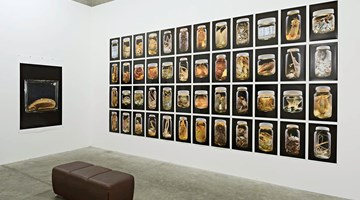 Contemporary art exhibition, Neil Pardington, The Order of Things at Jonathan Smart Gallery, Christchurch