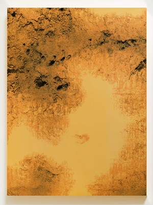 The Kind of Need-1 by Zhang Ding contemporary artwork