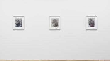 Contemporary art exhibition, James Welling, Transform at David Zwirner, 69th Street, New York
