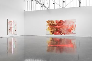 Exhibition view: Mary Weatherford,I've Seen Gray Whales Go By,Gagosian, West 24th Street, New York (13 September–15 October 2018). Artwork © Mary Weatherford. Courtesy Gagosian. Photo: Fredrik Nilsen Studio.
