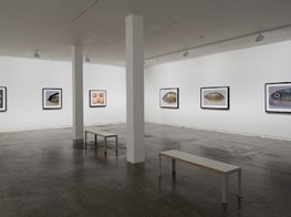 """Boyd Webb<br><em>From the Cusp</em><br><span class=""""oc-gallery"""">Two Rooms</span>"""
