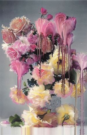 Rose 1 by Nick Knight contemporary artwork