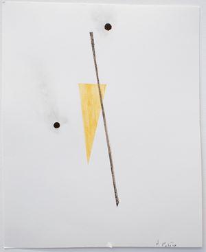 Onawe 8 by Fiona Pardington contemporary artwork