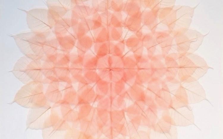 Miya Ando, Red Leaf Meditation Mandala (2015 ) (detail). Dyed bodhi ficus religiosa skeleton leaves monofilament. 53.3 x 53.3 cm. Courtesy Sundaram Tagore Gallery.
