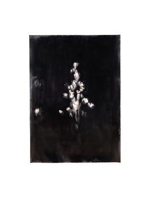 Bloom III by Alexandra Karakashian contemporary artwork