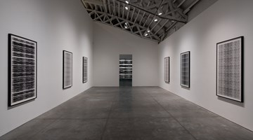 Contemporary art exhibition, Michal Rovner, Evolution at Pace Gallery, New York