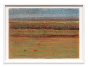Landscape with Tiny Houses by Richard Artschwager contemporary artwork